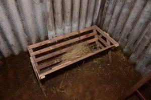 обустройство ямы для кроликов