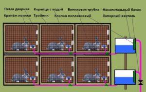 автопоилки для кроликов