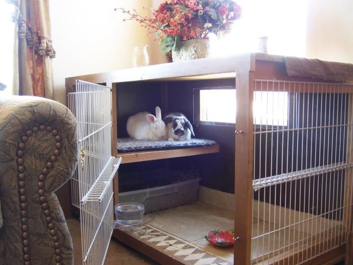 Домашняя клетка для кроликов
