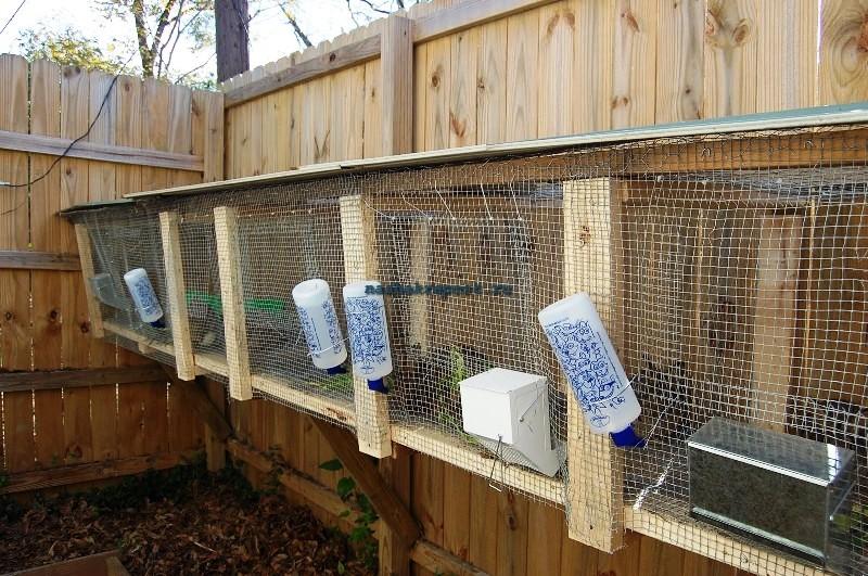 Как построить клетку для кроликов в домашних условиях