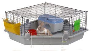 клетка декоративного кролика