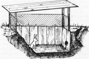 яма для содержания кроликов