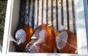 пакеты с сиропом