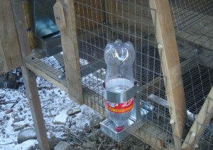 поилка из пластиковой бутылки для кроликов