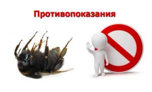 подмор пчёл - противопоказания