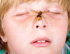 пчела и ребенок