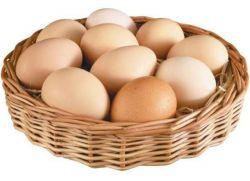 стоимость яиц цесарки
