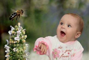 пчелы кусают детей