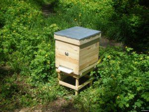 ульи для пчел