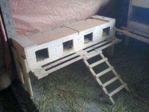 гнездо ящик