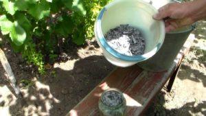 подкормка для винограда весной