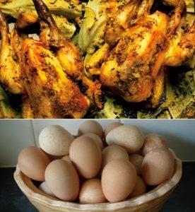 мясо и яйца цесарки