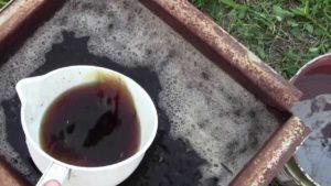 подкормка и удобрение винограда