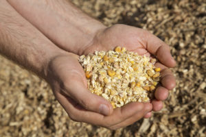 изготовление корма самодельного