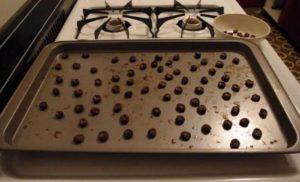 сушка винограда в духовке